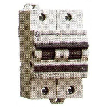 L&T MCB 80A 2Pole D-Curve AU15S20803D